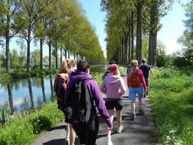 Vitam'inn - Belgique