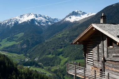 La Pensée Sauvage - Suisse - ma-detox