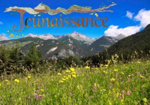 paysage de montagne dans le queyras avec un champ de fleurs au printemps et un ciel bleu azur